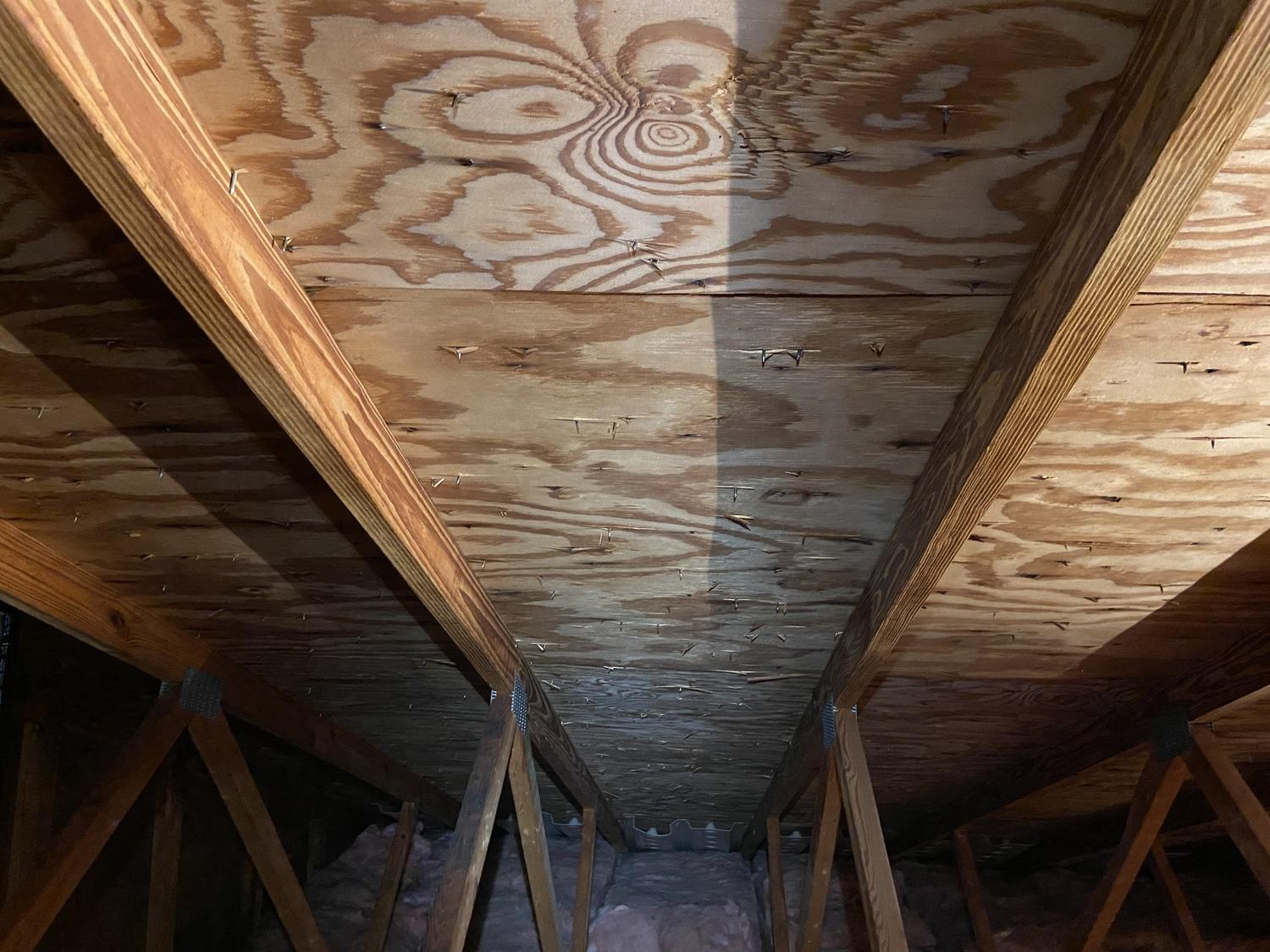 Cleaned and mold free attic