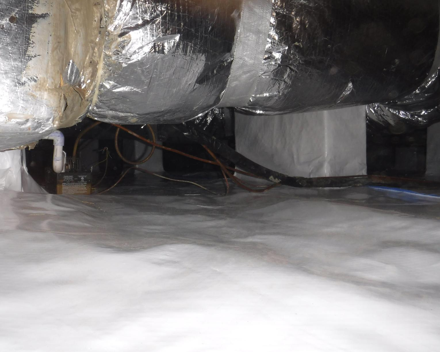 Prevent Pest Population in the Crawl Space