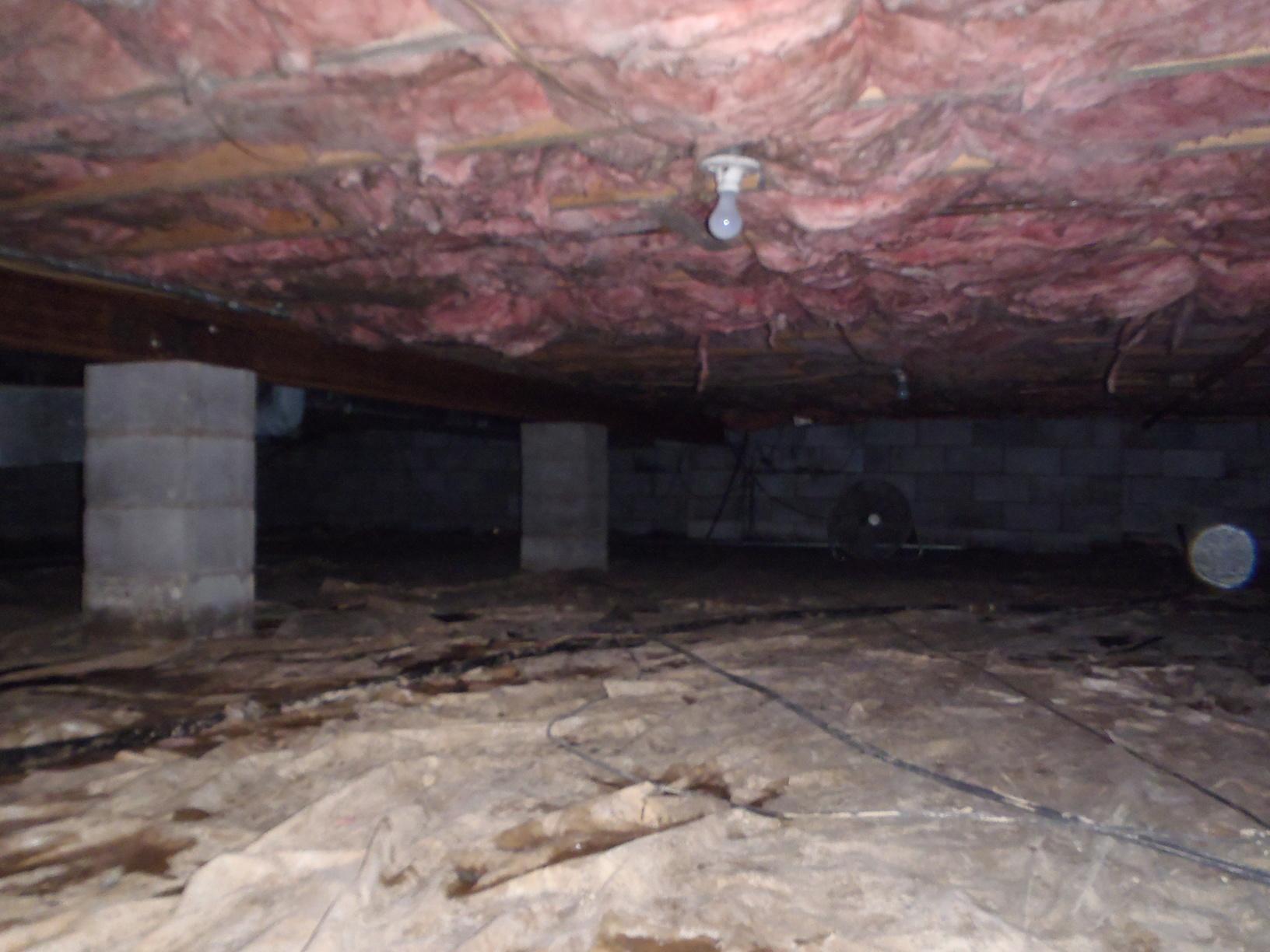 A Creepy Crawl Space in Lost Creek, West Virginia