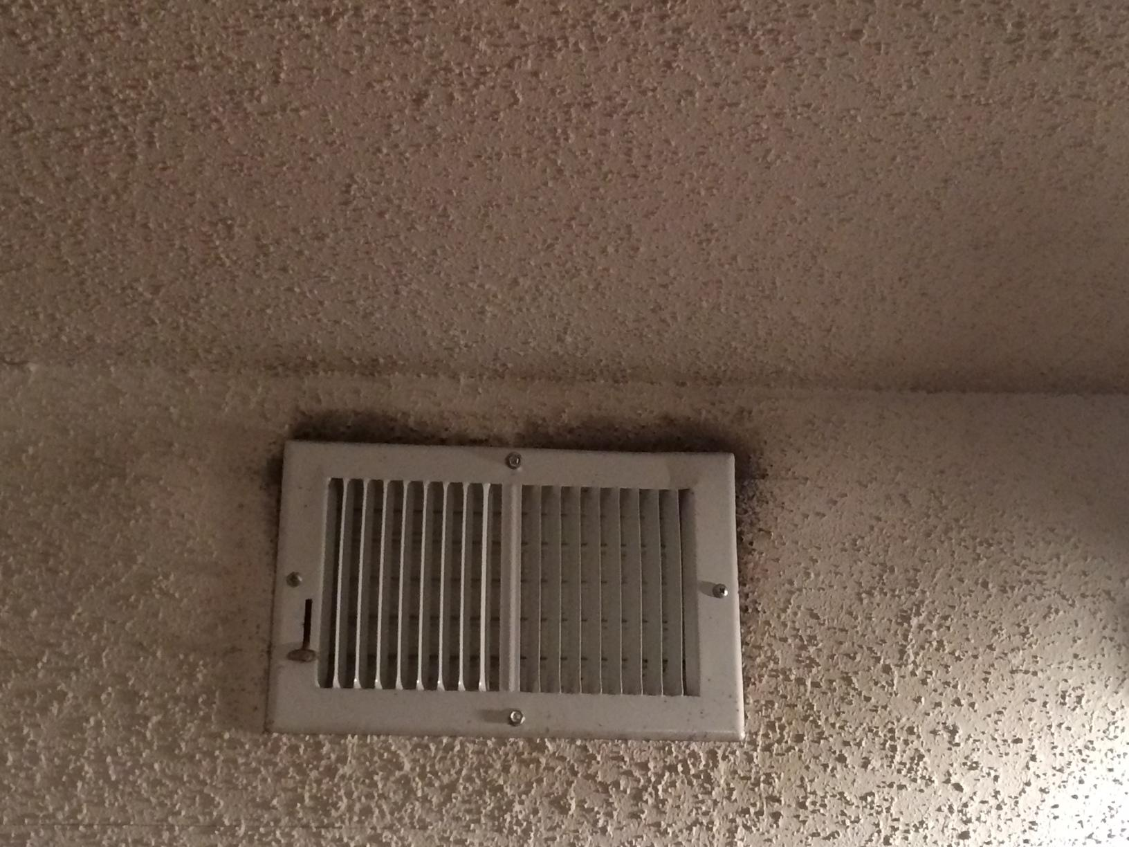 Mold in the air duct