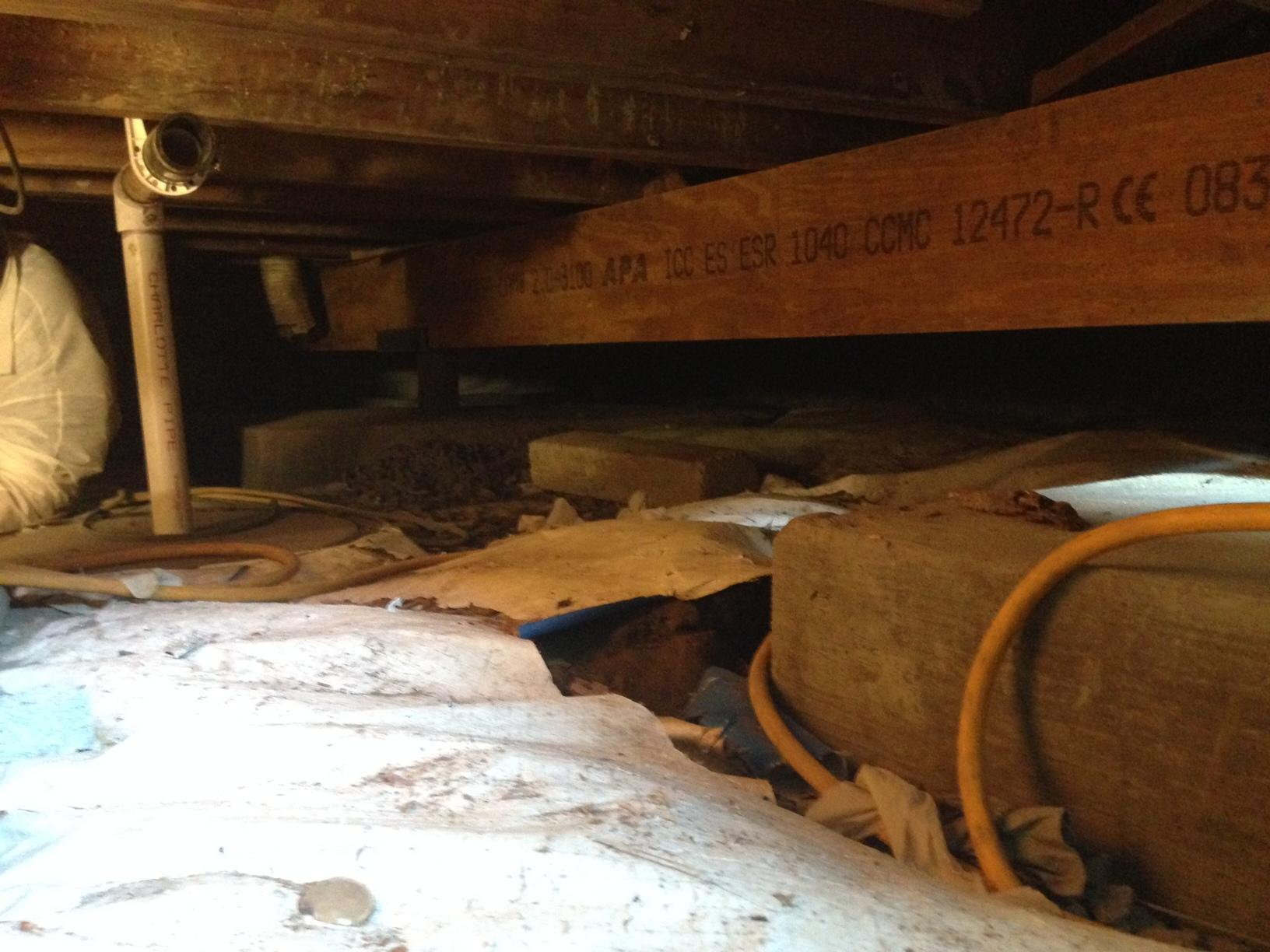 Replacement Beams