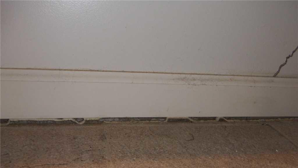 Foundation Repair Upstairs Signs Of Problematic Crawl Space In