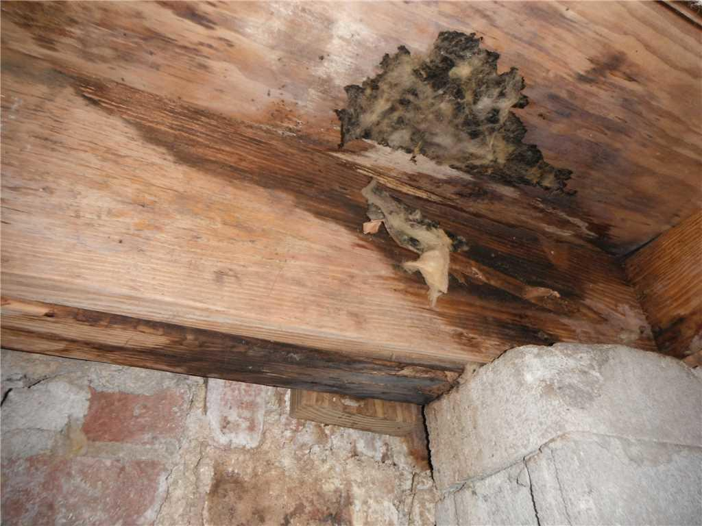Cantey Foundation Specialists Crawl Space Repair Photo Album Stabilization And Encapsulation In Summerville Sc Crawl Space