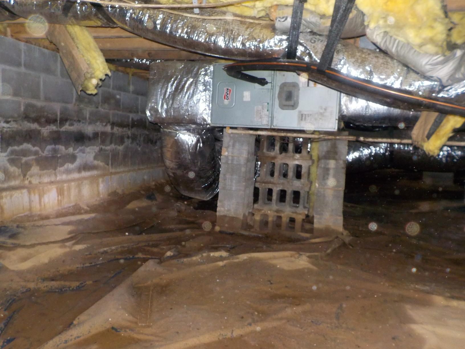 Wet, musty crawl space