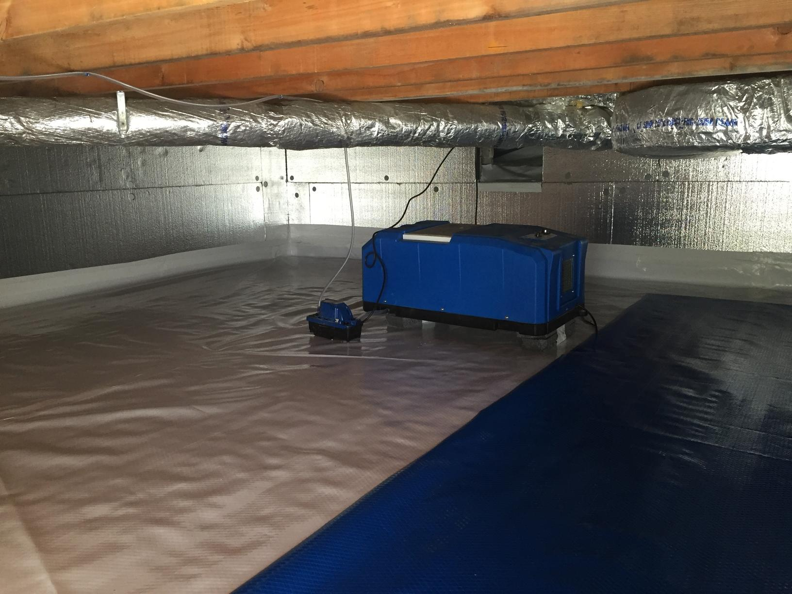 Crawlspace Dehumidifier in Seymour, CT