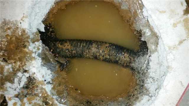 Dryzone Llc Basement Waterproofing Photo Album Wet