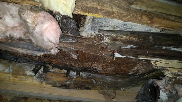 Cantey Foundation Specialists Photo Album Sister Joist