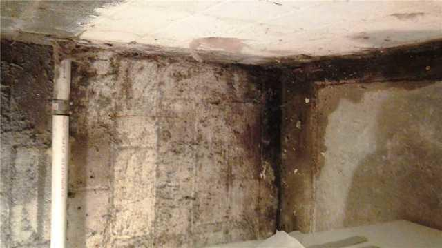 Part 1 -- 5 stains you should look out for on your basement walls - Image 3