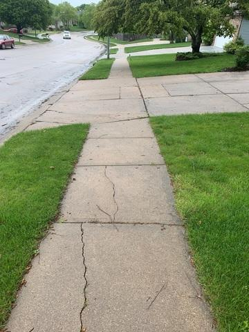 The other side of the sidewalk was experiencing similar damage - cracks and uneven surfaces.
