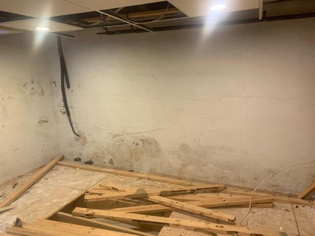 Mold in a basement can cause health problems for familys. On this wall, mold covered the base of the foundation caused by water coming through the cracks.
