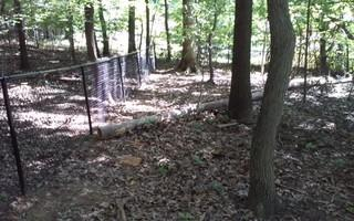 In this picture you can see how well a black chain link fence can fit into your existing yard.