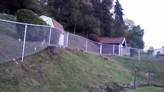 Here you can see a fully installed silver chain link fence. Notice that we are able to manage any sort of terrain.