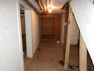 This basement was dirty and water damaged when we came in to visit.