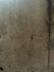 A view of one of the cracks in the foundation