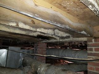 Moisture trapped underneath a crawl space creates damage just like this.