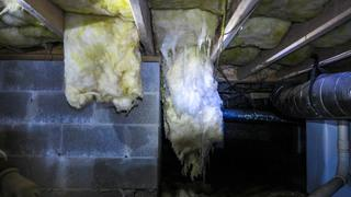 Insulation falling is a bad indicator meaning that there is moisture damage happening in a crawl space.