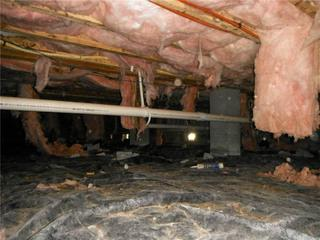 Insulation falling is a good indicator that moisture has made its way into the crawl space.