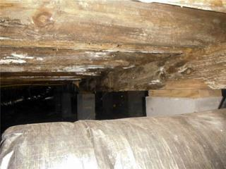 Moisture is a wooden beams' worst enemy when it comes to standing the test of time.