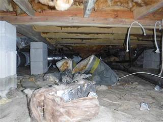 During a routine termite inspection, Homeowner Donnie was alerted to the rotting wood issue in his crawl space.