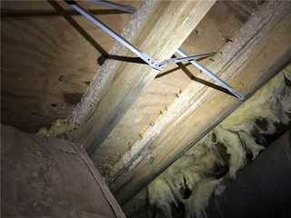 Mold growth is not only hazardous to a home's structure but to the homeowners health as well.