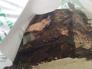 This photo shows the extent of damage that moisture was able to do to this home's wood. This can actually compromise the home's structural integrity.