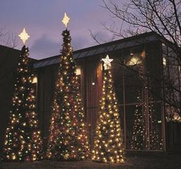 Our tree lighting services are great for any ceremony or if you just want to give your town or home a great holiday look.