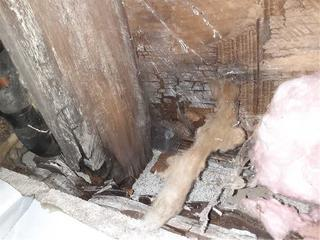 Rotting beam which caused sagging floors