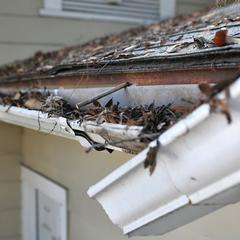 Gutters and Downspouts are Important to a Home's Prevention of Damage