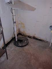 Original Sump Pump