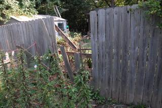Fence  Damaged by tree.
