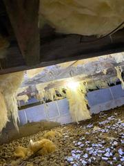 Insulation falling down due to the moisture in the crawlspace