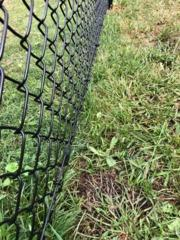 4' Black Chain Link (1) 6' double gate