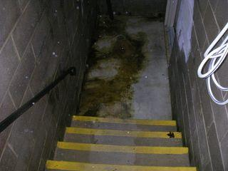 This basement is flooded. At the bottom of the steps of the basement there is a lot of water to be addressed.