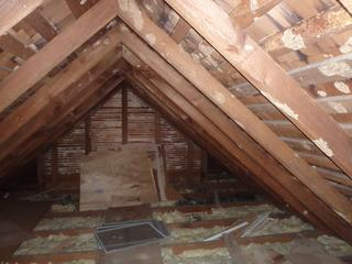 Old attic insulation can collect dirt, dusts and bugs over the many months or years it has sat in an attic. Old attic insulation can just become a mess!