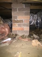 When System Design Specialist Greg visited Julia's home, he noticed leaves, rocks, deteriorating insulation, and other debris had found its way into the crawl space.