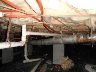 High moisture levels were found in Wayne's home.