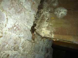 The supplemental beams of the church were in a dilapidated state, where mold and rot slowly weakened the floor structure.