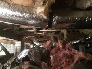 Isabelle's crawl space had fallen insulation and duct work, which Cantey put back into place while working on the supplemental beams.