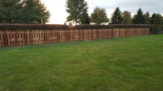 This is a photo of the completed cedar picket fence.