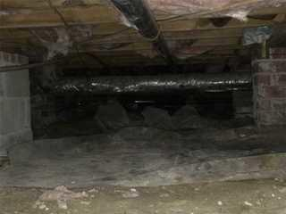 Upon first inspection, Specialist James knew that Bonnie's wet and dingy crawl space would have mold issues.