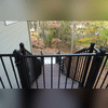We added a gate at the top of the stairs as a safety feature