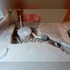 SuperSump® Sump Pump System Install Progress