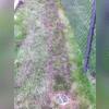 Buried Discharge Line