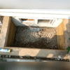 Well Duct Drain