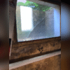 The basement suffered from mold and water damage from repeated flooding.