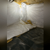 The crawlspace was dirty and the insulation needed to be replaced.