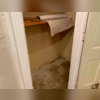 There was water damage on the walls due to repeated flooding.