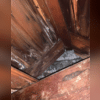 Mold caused by water damage.