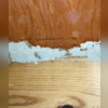 "I started my inspection in the crawl space. I found a  large ""mud tube"" right under the stove area, the exact area where the termites swarmed in the kitchen. These tubes are frequently made from mud/dirt and termite droppings and are one of the common signs of termites, especially in..."