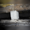 Looks like we were able to catch this crawl space's problems before they became bigger ones!